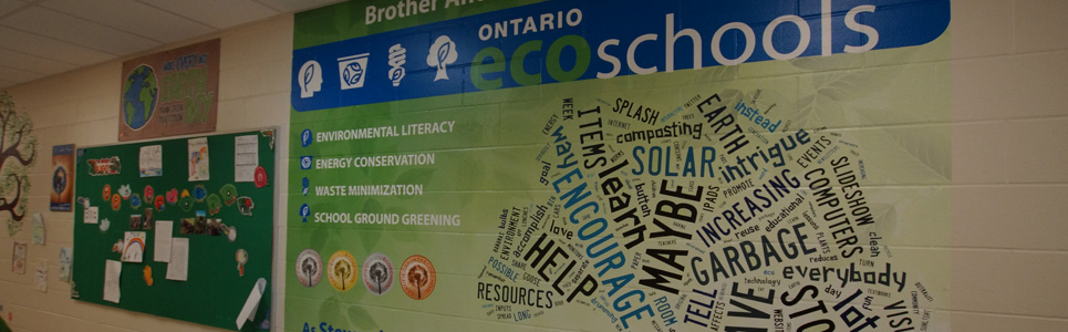 Eco School bulletin board